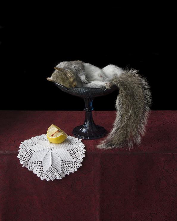 Witham_OnRipenessAndRot17_LemonAndSquirrel