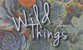 wild-things-cover-1
